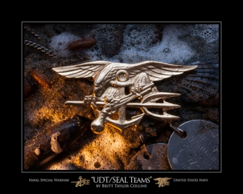 UDT/Seal Teams - Trident Badge