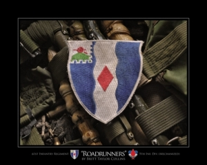 "61st Infantry Division- ""ROADRUNNER""-5th MECH-Combat"