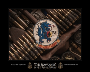 Seawolves-HA(L)S 3rd Squadron-Navy Aviation